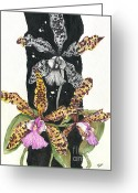 Fine American Art Greeting Cards - ORCHID 17 Elena Yakubovich Greeting Card by Elena Yakubovich