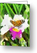 Fushia Greeting Cards - Orchid and Butterfly Greeting Card by Anthony Caruso