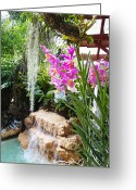 Tropical Gardens Greeting Cards - Orchid garden Greeting Card by Carey Chen
