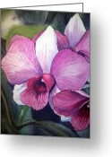 Mother Gift Painting Greeting Cards - Orchid Greeting Card by Irina Sztukowski