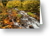 Gorge Greeting Cards - Oregon Autumn Beauty Greeting Card by Mike  Dawson