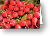 Long Island Greeting Cards - Organic Radishes Greeting Card by Wendy Connett