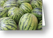 Healthy Eating Greeting Cards - Organic Watermelon Greeting Card by Wendy Connett