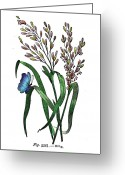 Outmoded Digital Art Greeting Cards - Oryza sativa Greeting Card by Ziva