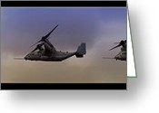 Osprey Photo Greeting Cards - Osprey Transformation Greeting Card by Ricky Barnard