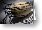 Inside Of Greeting Cards - Ostrich egg surrounded by barbed wire Greeting Card by Sami Sarkis