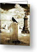 Passerines Greeting Cards - Otherworldly Spectrum Greeting Card by Gothicolors With Crows