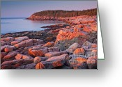 Ocean Path Greeting Cards - Otter Cliffs  Greeting Card by Susan Cole Kelly