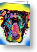 Pitbull Greeting Cards - Otter Pitbull Greeting Card by Dean Russo