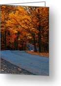 Indiana Autumn Greeting Cards - Out For A Ride Greeting Card by Randall Tishner