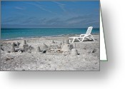 Sandcastle Greeting Cards - Out for Lunch Greeting Card by East Coast Barrier Islands Betsy A Cutler