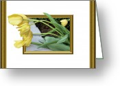 Out Of Frame Greeting Cards - Out of Frame Yellow Tulips Greeting Card by Kristin Elmquist