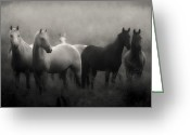Ron Mcginnis Photography Greeting Cards - Out of the Mist Greeting Card by Ron  McGinnis