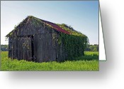 Old Barns Photo Greeting Cards - Out To Pasture Greeting Card by Joy Tudor