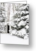 Virginia Winter Greeting Cards - Outhouse in Pines Greeting Card by Thomas R Fletcher