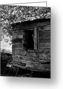 St. Lucia Photographs Greeting Cards - Outhouse Kitchen Greeting Card by Bill Mortley