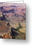 Grand Canyon Greeting Cards - Outlook Greeting Card by Viktor Savchenko