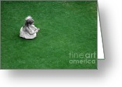 Alone Greeting Cards - Outside Greeting Card by Dan Holm