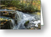 Nantahala Forest Greeting Cards - Over The Edge Greeting Card by Debra and Dave Vanderlaan