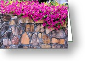 Fushia Photo Greeting Cards - Over The Wall Greeting Card by Jan Amiss Photography