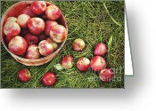 Overhead Greeting Cards - Overhead shot of a basket of freshly picked apples Greeting Card by Sandra Cunningham