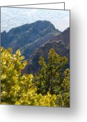 Sandias Greeting Cards - Overlook Greeting Card by Chelsey Beck