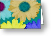 Ruth Palmer Greeting Cards - Oversize Daisies Greeting Card by Ruth Palmer