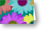 Ruth Palmer Greeting Cards - Oversize Daisies Two Greeting Card by Ruth Palmer