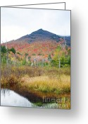 Grafton County Greeting Cards - Owls Head - White Mountains New Hampshire  Greeting Card by Erin Paul Donovan