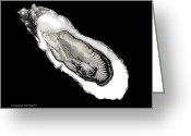 Erotic Photographs Greeting Cards - Oyster39 Greeting Card by Andy Frasheski