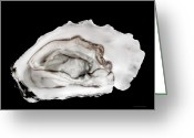 Erotic Photographs Greeting Cards - Oyster5-lite Greeting Card by Andy Frasheski