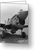 Military Pictures Greeting Cards - P-40 Warhawk Greeting Card by War Is Hell Store