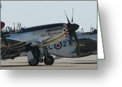 Mark Lehar Greeting Cards - P-51 Guardians Greeting Card by Mark Lehar