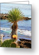 Pool Break Greeting Cards - Pacific Ocean View Greeting Card by Mariola Bitner