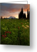 Paintbrush Photo Greeting Cards - Paintbrush Sunset Greeting Card by Mike  Dawson