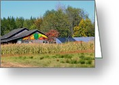 Turning Leaves Greeting Cards - Painted Barn Greeting Card by Chris Anderson