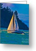 San Rafael Bridge Greeting Cards - Painted Sails Greeting Card by Mitch Shindelbower