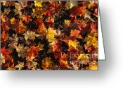 Thanksgiving Art Greeting Cards - Painted Sidewalks Greeting Card by Luke Moore