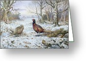 Winter Painting Greeting Cards - Pair of Pheasants with a Wren Greeting Card by Carl Donner