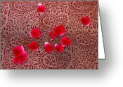 Mango Digital Art Greeting Cards - Paisley and Petals Greeting Card by Cinnabar and Saffron