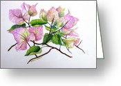 Giclee Pastels Greeting Cards - Pale Pink Bouganvillea Greeting Card by Karin Best
