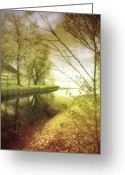 Braches Greeting Cards - Pale Reflections of Life Greeting Card by Tara Turner
