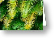 Hawai Greeting Cards - Palm Leaves in Green and Gold Greeting Card by Karon Melillo DeVega