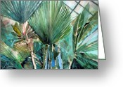 Rain Drawings Greeting Cards - Palm Light Greeting Card by Mindy Newman