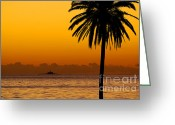 Beautiful Clouds Greeting Cards - Palm Tree Sunset Greeting Card by Carlos Caetano