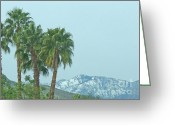 Barks Greeting Cards - Palm Trees and Snow Tops Greeting Card by Deborah Smolinske