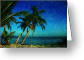 Florida Beaches Greeting Cards - Palm trees in Key West Greeting Card by Susanne Van Hulst