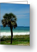 Panama City Beach Greeting Cards - Palmetto and the Beach Greeting Card by Susanne Van Hulst
