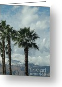 Barks Greeting Cards - Palms Clouds Mountains and Snow Greeting Card by Deborah Smolinske