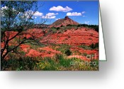 State Flowers Greeting Cards - Palo Duro Canyon State Park Greeting Card by Thomas R Fletcher